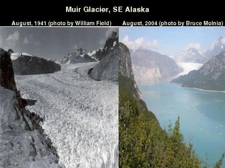 WhiteEarthWhite EarthAlaskaMuirGlacierDisappearingFast194120040001A