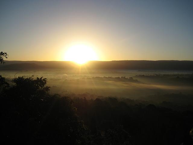 sunrise-rainforest-kakamega-kenya-africa-sun